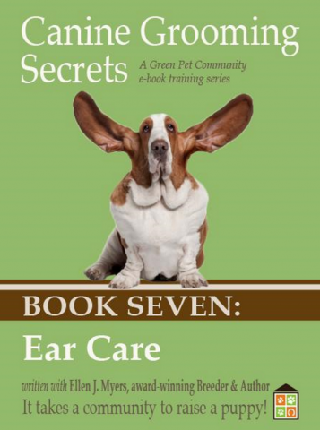 Dog Cleaning Ears, Tools and Recepies, Drying Dogs Ears.