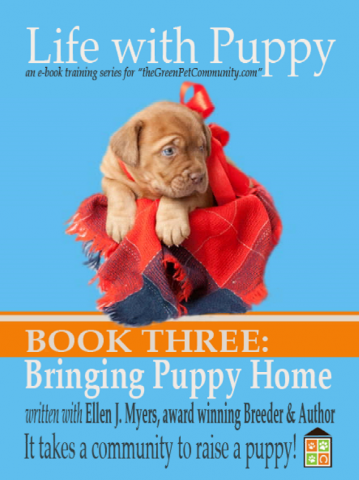 How to House train a Puppy, Bringing Puppy Home, At Breeder's