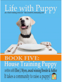 How to Potty Train your Puppy? Training to a Litter Box