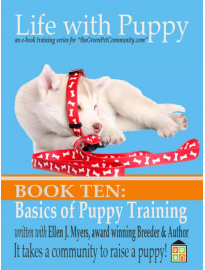 Puppy Training, you will be teaching your puppy, including sit, stay, down and come