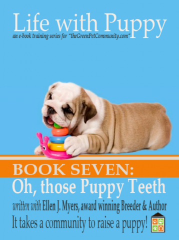 Dental Care for your Puppy or Dogs. Understanding Your Puppy's Mouth