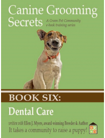 Dog Dental Care, Dog Toothpaste and Brushing Dog's Teeth.